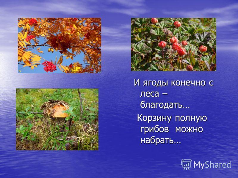 И ягоды конечно с леса – благодать… И ягоды конечно с леса – благодать… Корзину полную грибов можно набрать… Корзину полную грибов можно набрать…