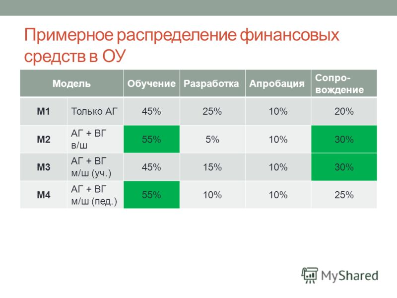 Примерное распределение финансовых средств в ОУ МодельОбучениеРазработкаАпробация Сопро- вождение М1Только АГ45%25%10%20% М2 АГ + ВГ в/ш 55%5%5%10%30% М3 АГ + ВГ м/ш (уч.) 45%15%10%30% М4 АГ + ВГ м/ш (пед.) 55%10%10%10%25%