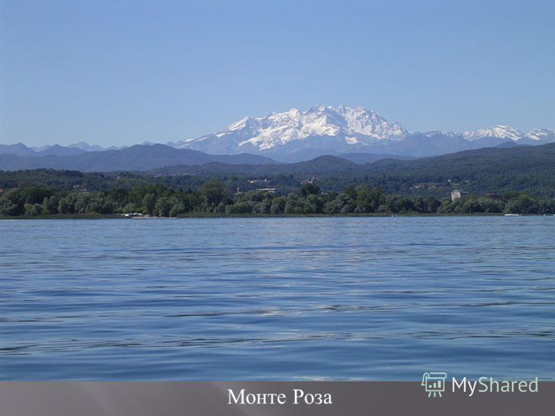 Монте Роза