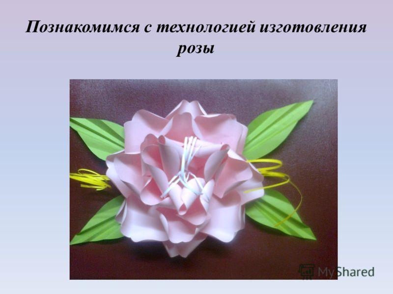 Познакомимся с технологией изготовления розы