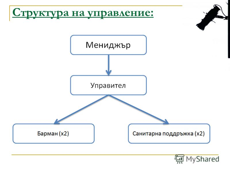 Структура на управление: