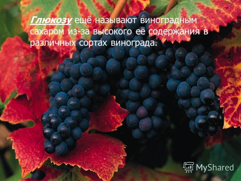Глюкозу ещё называют виноградным сахаром из-за высокого её содержания в различных сортах винограда.