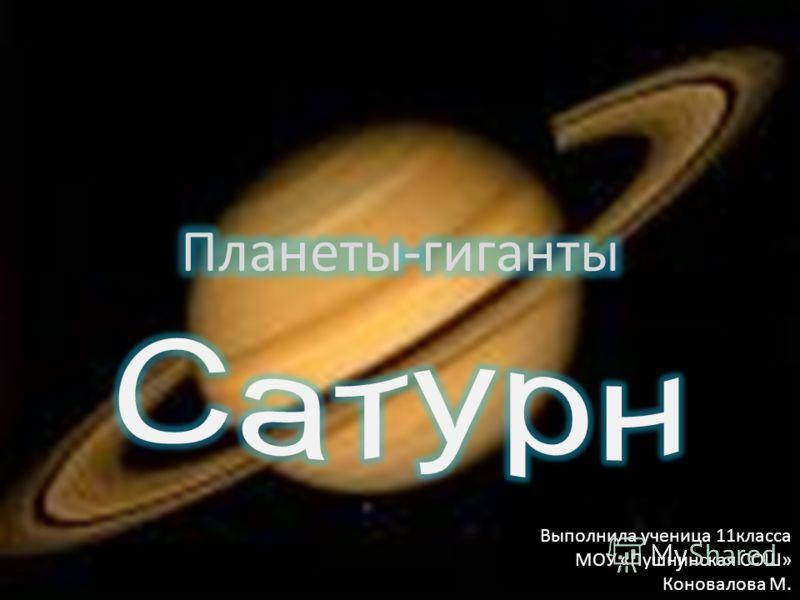 Выполнила ученица 11класса МОУ «Пушнинская СОШ» Коновалова М.