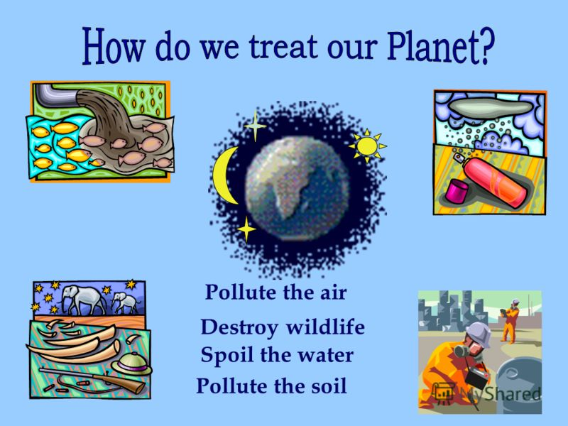 Pollute the air Destroy wildlife Spoil the water Pollute the soil