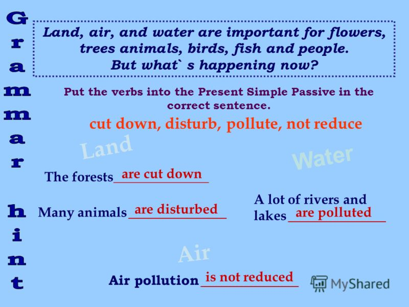 Land, air, and water are important for flowers, trees animals, birds, fish and people. But what` s happening now? Land Water The forests______________ Many animals __________ Air A lot of rivers and lakes __________ Air pollution __________ cut down,