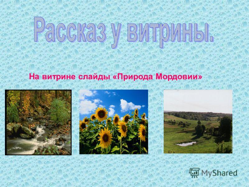 На витрине слайды «Природа Мордовии»