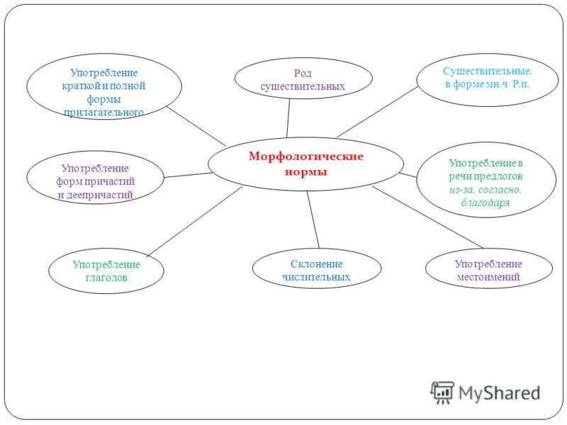 Морфологические нормы Склонение числительных Употребление в речи предлогов из-за, согласно, благодаря Употребление глаголов Употребление форм причастий и деепричастий Употребление местоимений Употребление краткой и полной формы прилагательного Род су