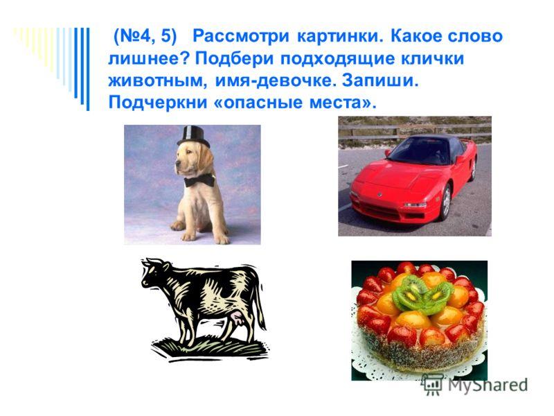 (4, 5) Рассмотри картинки. Какое слово лишнее? Подбери подходящие клички животным, имя-девочке. Запиши. Подчеркни «опасные места».