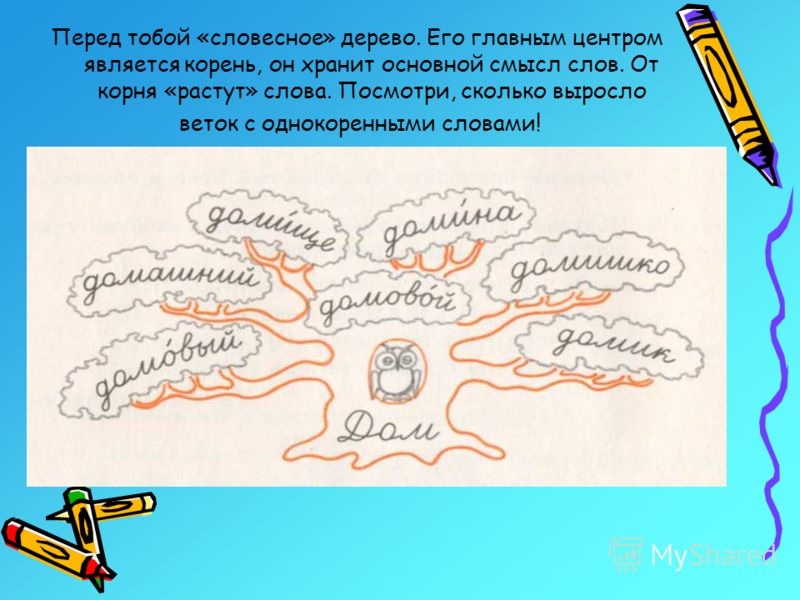 Перед тобой «словесное» дерево. Его главным центром является корень, он хранит основной смысл слов. От корня «растут» слова. Посмотри, сколько выросло веток с однокоренными словами!