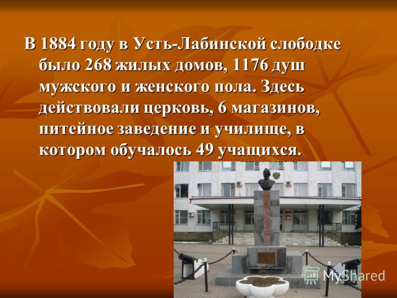 В 1884 году в Усть-Лабинской слободке было 268 жилых домов, 1176 душ мужского и женского пола. Здесь действовали церковь, 6 магазинов, питейное заведение и училище, в котором обучалось 49 учащихся.