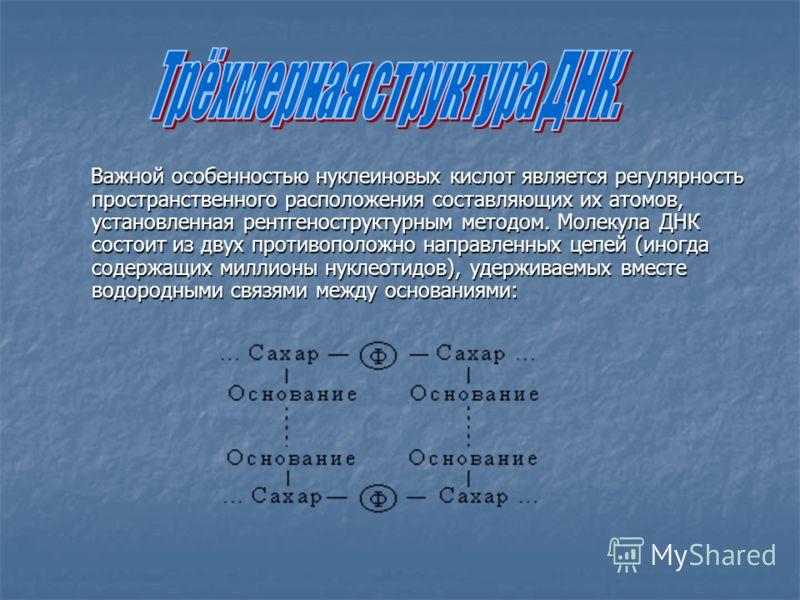 Важной особенностью нуклеиновых кислот является регулярность пространственного расположения составляющих их атомов, установленная рентгеноструктурным методом. Молекула ДНК состоит из двух противоположно направленных цепей (иногда содержащих миллионы