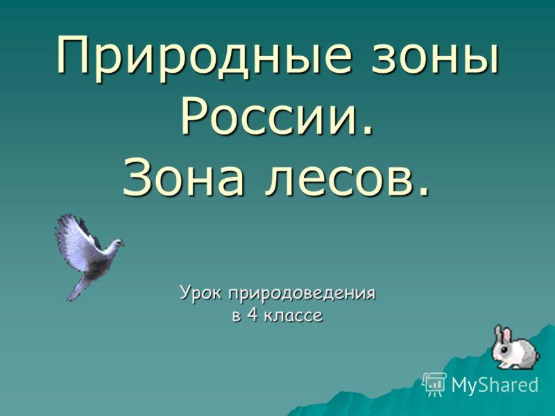 Природные зоны России. Зона лесов. Урок природоведения в 4 классе