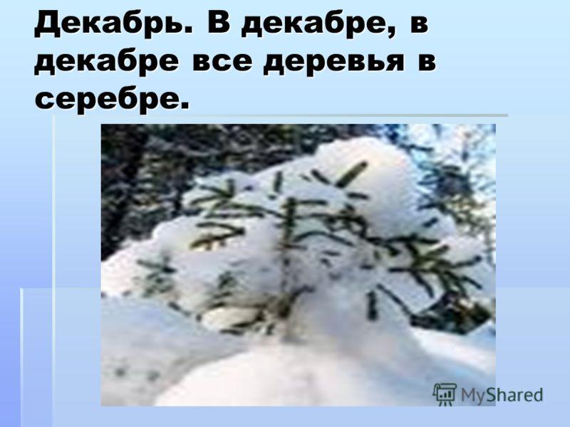 Декабрь. В декабре, в декабре все деревья в серебре.