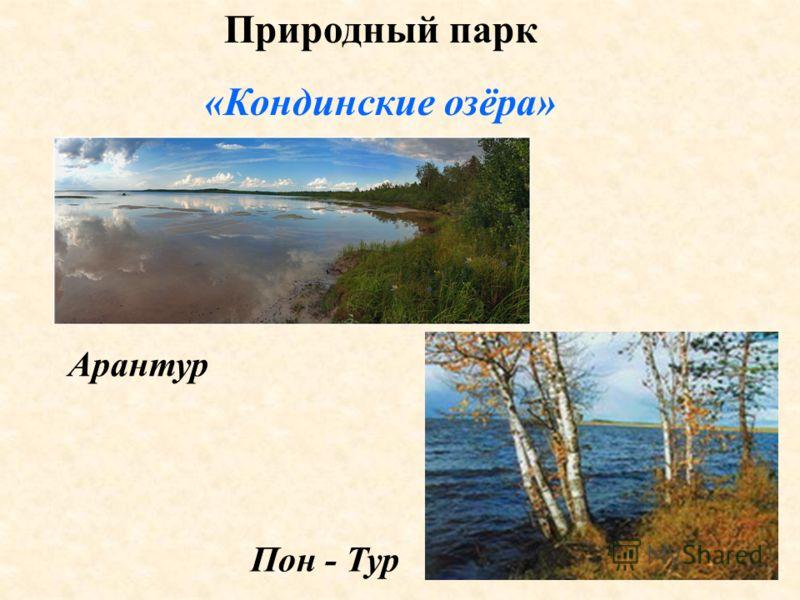 Природный парк «Кондинские озёра» Арантур Пон - Тур