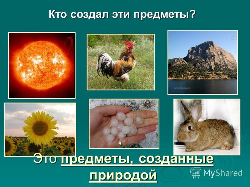 Природа живая и неживая природа