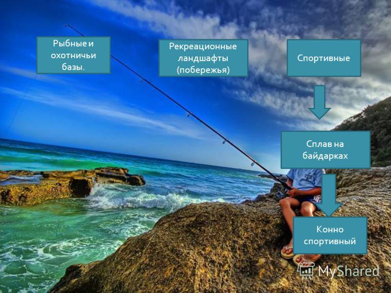 Сплав на байдарках Рекреационные ландшафты ( побережья ) Рыбные и охотничьи базы. Спортивные Конно спортивный
