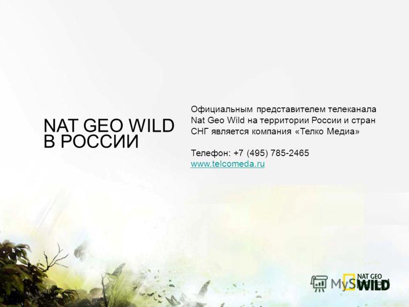 Официальным представителем телеканала Nat Geo Wild на территории России и стран СНГ является компания «Телко Медиа» Телефон: +7 (495) 785-2465 www.telcomeda.ru NAT GEO WILD В РОССИИ