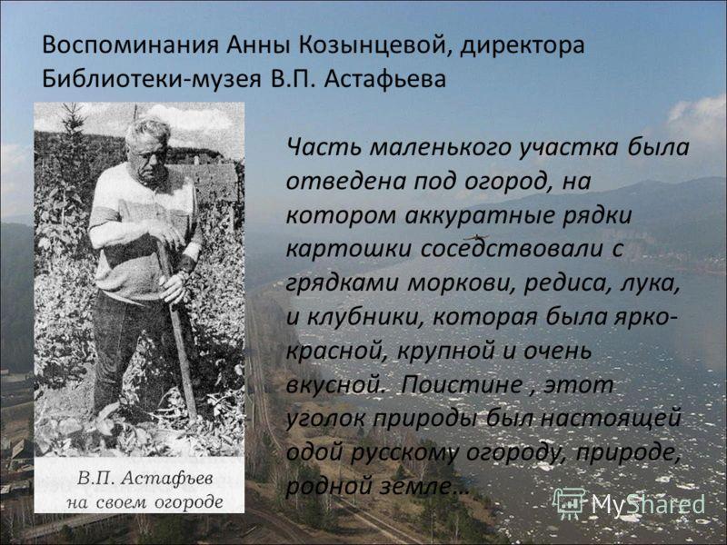 Воспоминания Анны Козынцевой, директора Библиотеки-музея В.П. Астафьева Часть маленького участка была отведена под огород, на котором аккуратные рядки картошки соседствовали с грядками моркови, редиса, лука, и клубники, которая была ярко- красной, кр