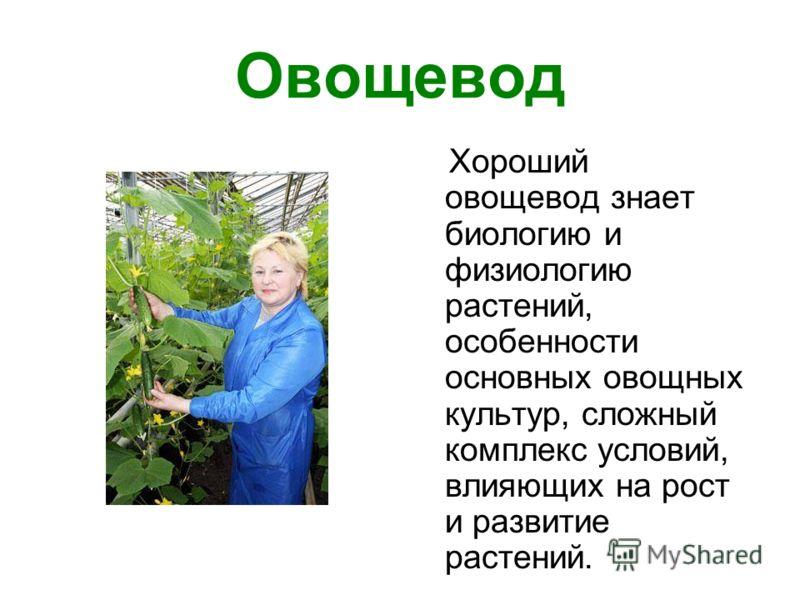 Овощевод Хороший овощевод знает биологию и физиологию растений, особенности основных овощных культур, сложный комплекс условий, влияющих на рост и развитие растений.