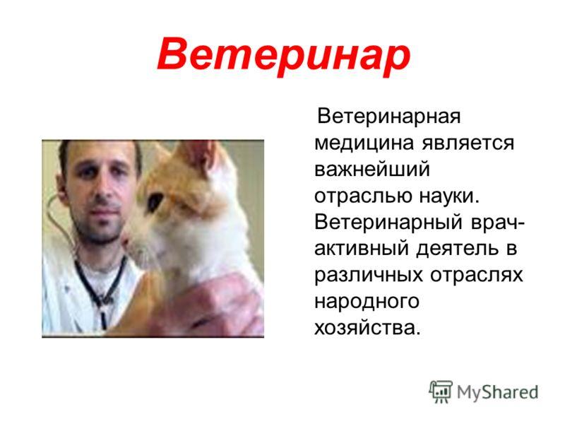 Ветеринар Ветеринарная медицина является важнейший отраслью науки. Ветеринарный врач- активный деятель в различных отраслях народного хозяйства.