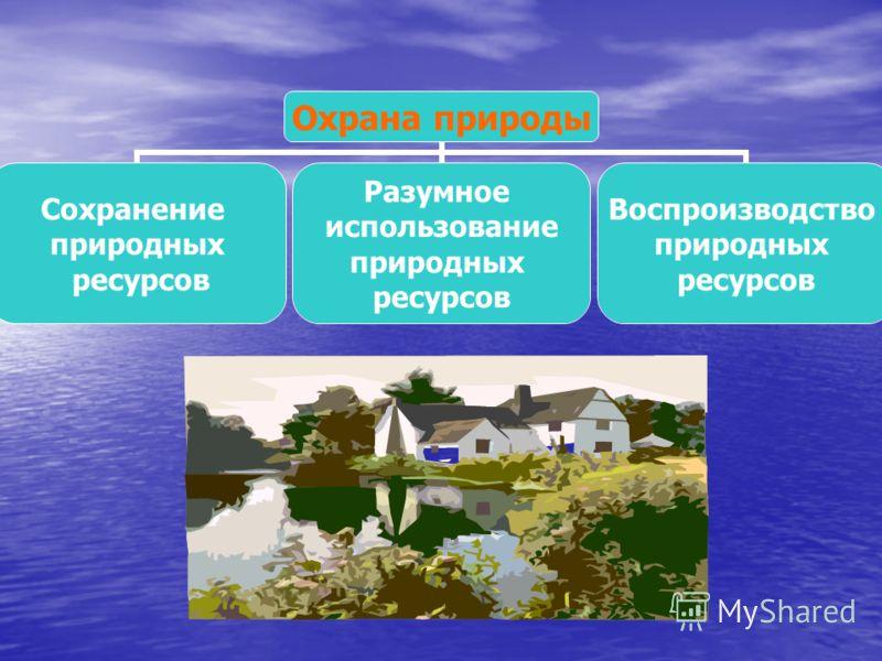 Охрана природы Сохранение природных ресурсов Разумное использование природных ресурсов Воспроизводство природных ресурсов