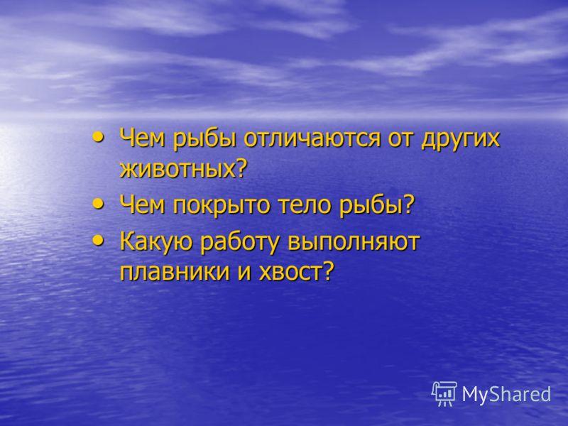 Чем рыбы отличаются от других животных? Чем рыбы отличаются от других животных? Чем покрыто тело рыбы? Чем покрыто тело рыбы? Какую работу выполняют плавники и хвост? Какую работу выполняют плавники и хвост?