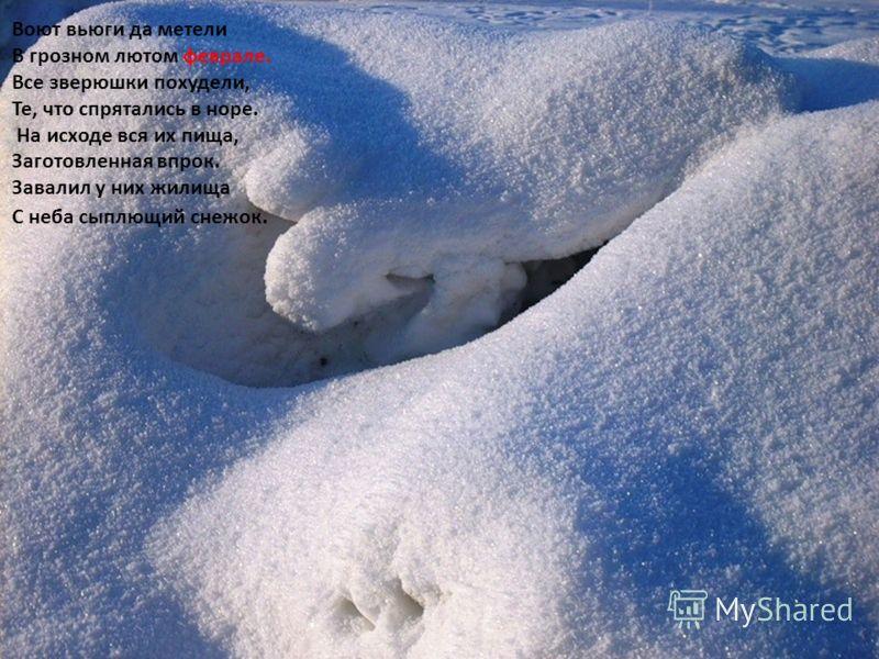 Воют вьюги да метели В грозном лютом феврале. Все зверюшки похудели, Те, что спрятались в норе. На исходе вся их пища, Заготовленная впрок. Завалил у них жилища С неба сыплющий снежок. Воют вьюги да метели В грозном лютом феврале. Все зверюшки похуде