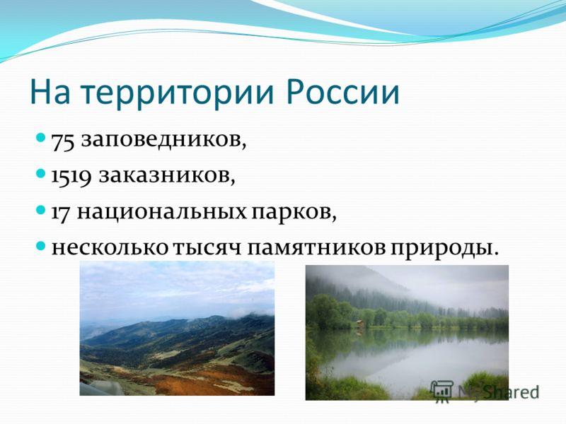 На территории России 75 заповедников, 1519 заказников, 17 национальных парков, несколько тысяч памятников природы.