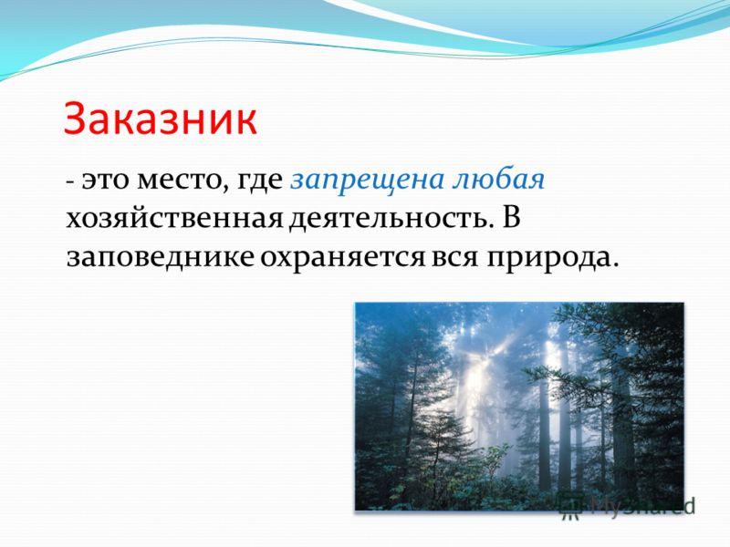 Заказник - это место, где запрещена любая хозяйственная деятельность. В заповеднике охраняется вся природа.