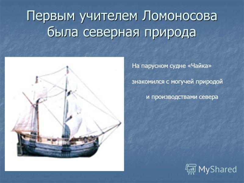 Первым учителем Ломоносова была северная природа На парусном судне «Чайка» знакомился с могучей природой и производствами севера
