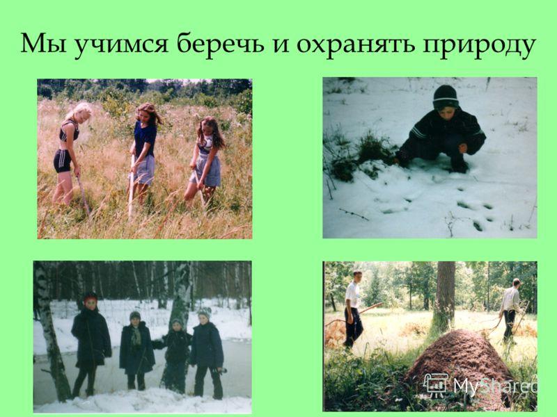 Мы учимся беречь и охранять природу