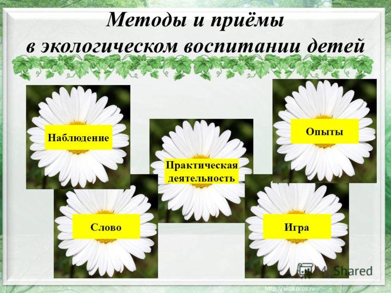 Методы и приёмы в экологическом воспитании детей Наблюдение Слово Практическая деятельность Игра Опыты