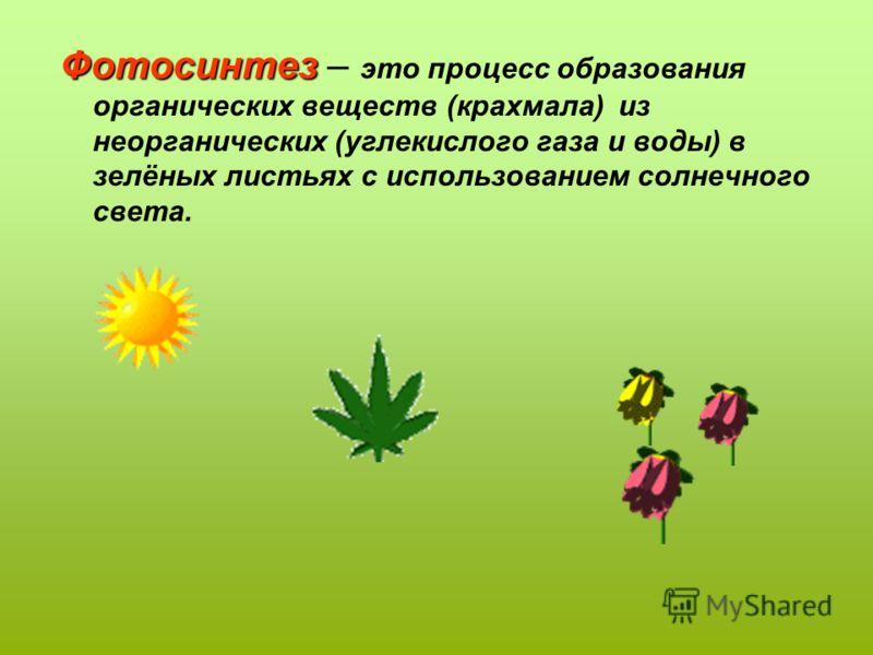 Фотосинтез Фотосинтез – это процесс образования органических веществ (крахмала) из неорганических (углекислого газа и воды) в зелёных листьях с использованием солнечного света.