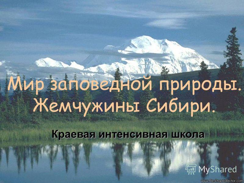 Мир заповедной природы. Жемчужины Сибири. Краевая интенсивная школа