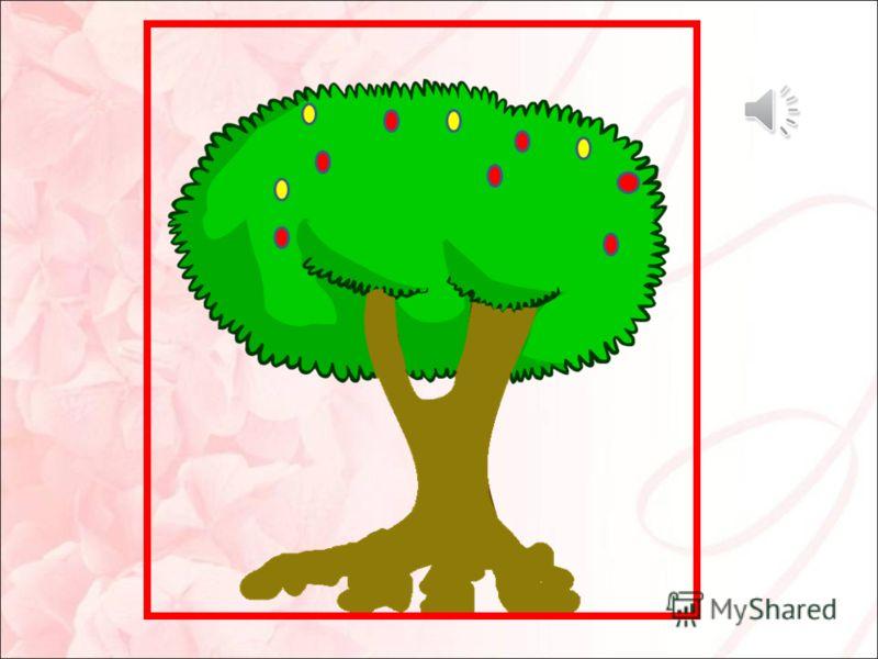 Еще до окраски листвы, оставшиеся в ней пита- тельные вещества перемещаются в ветки, ствол и корни дерева. Там они сохраняются до будущего года.