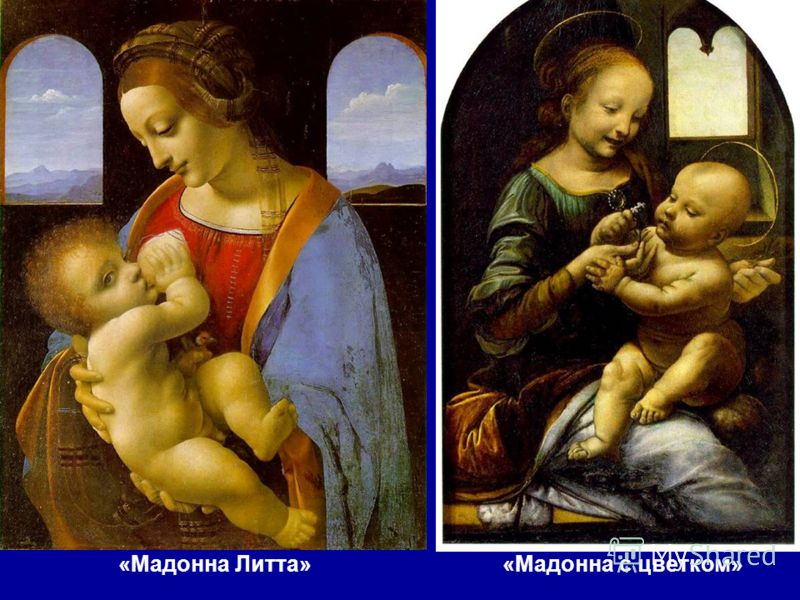 «Мадонна с цветком»«Мадонна Литта»