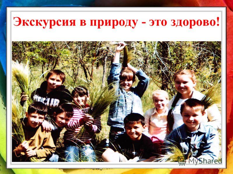 Работа школы по реализации Программ Программа развития экологического образования ( с 2008 г). Цель программы: Комплексное решение проблем обеспечения экологической безопасности. Решая поставленные задачи, учителя и воспитатели проводят экскурсии, ур