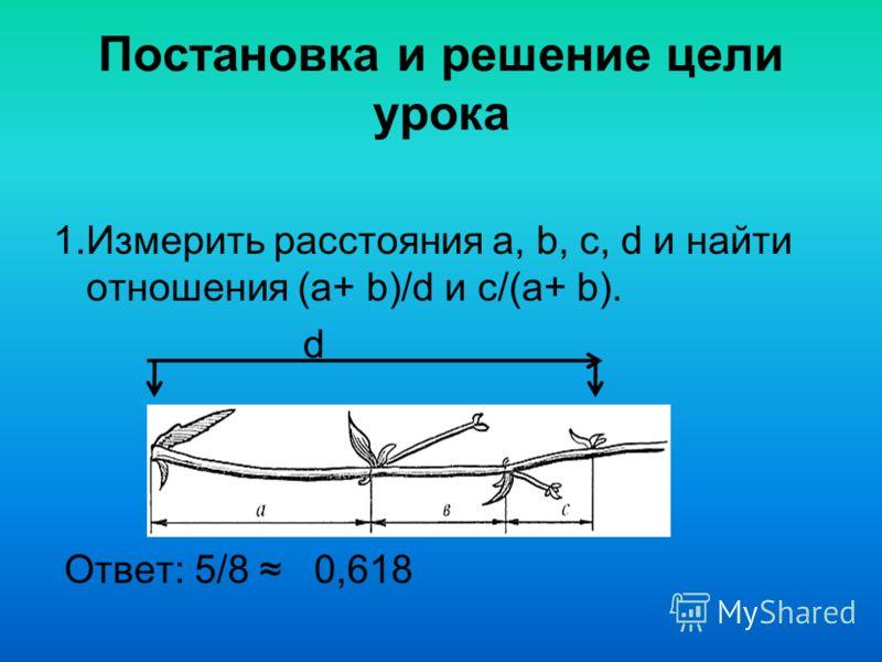 Постановка и решение цели урока 1.Измерить расстояния a, b, c, d и найти отношения (a+ b)/d и c/(a+ b). d Ответ: 5/8 0,618