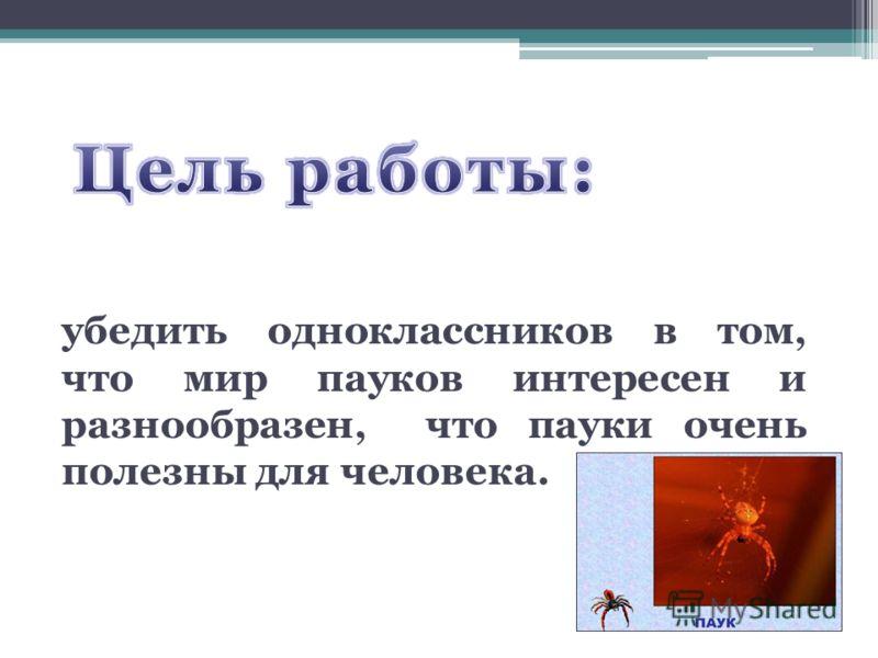 убедить одноклассников в том, что мир пауков интересен и разнообразен, что пауки очень полезны для человека.