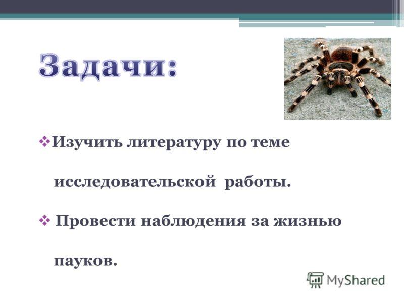 Изучить литературу по теме исследовательской работы. Провести наблюдения за жизнью пауков.