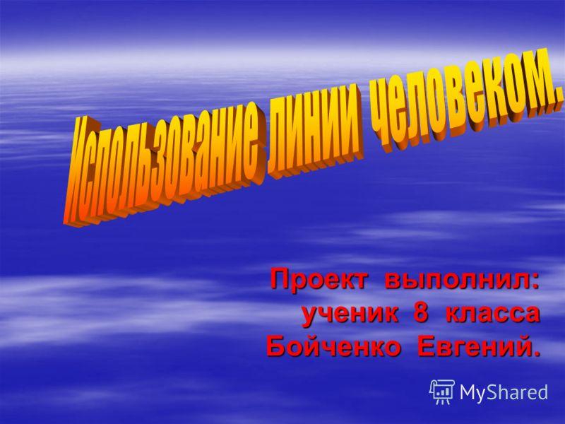 Проект выполнил: ученик 8 класса Бойченко Евгений. Бойченко Евгений.