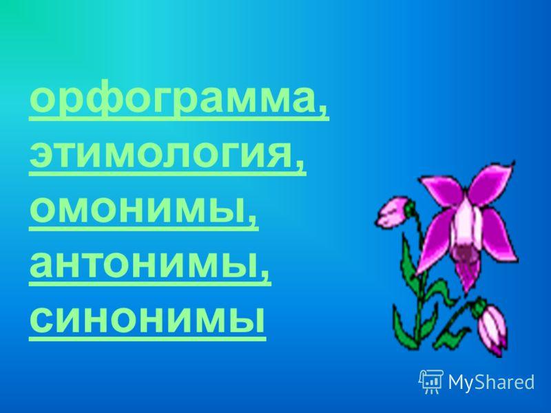 орфограмма, этимология, омонимы, антонимы, синонимы