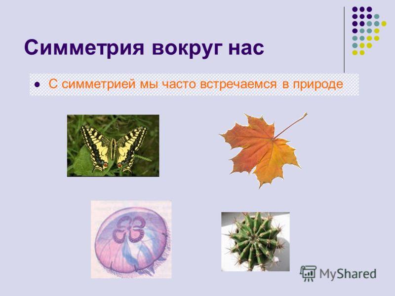 Симметрия вокруг нас С <a href='http://www.myshared.ru/theme/simmetriya-prezentatsiya/1' title='симметрия в природе'>симметрией мы часто встречаемся в