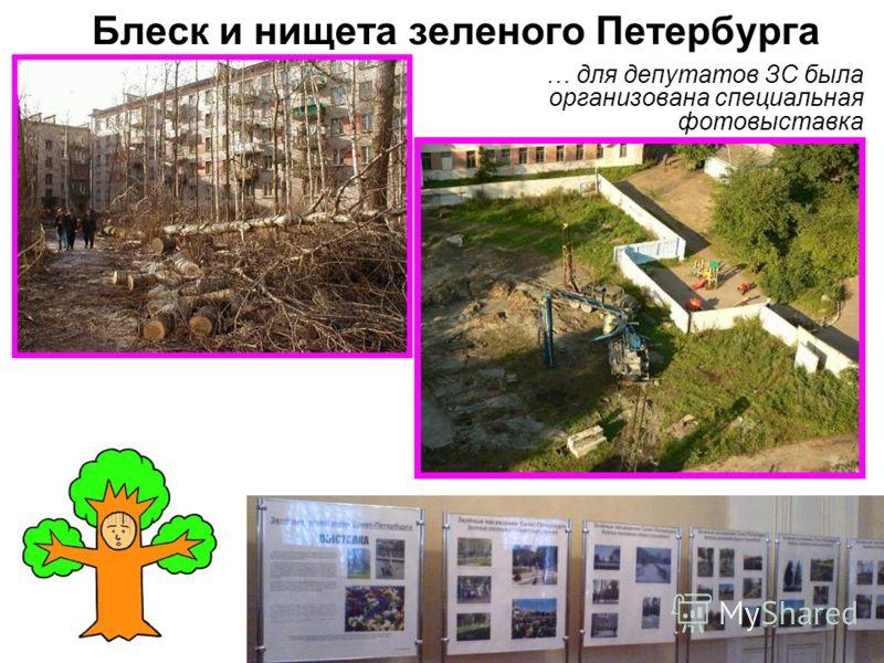 Блеск и нищета зеленого Петербурга … для депутатов ЗС была организована специальная фотовыставка