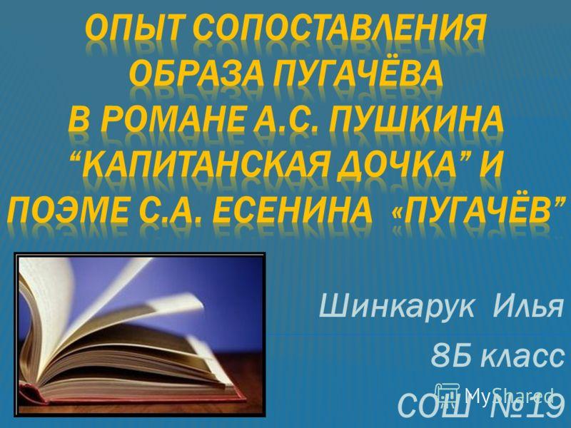 Шинкарук Илья 8Б класс СОШ 19