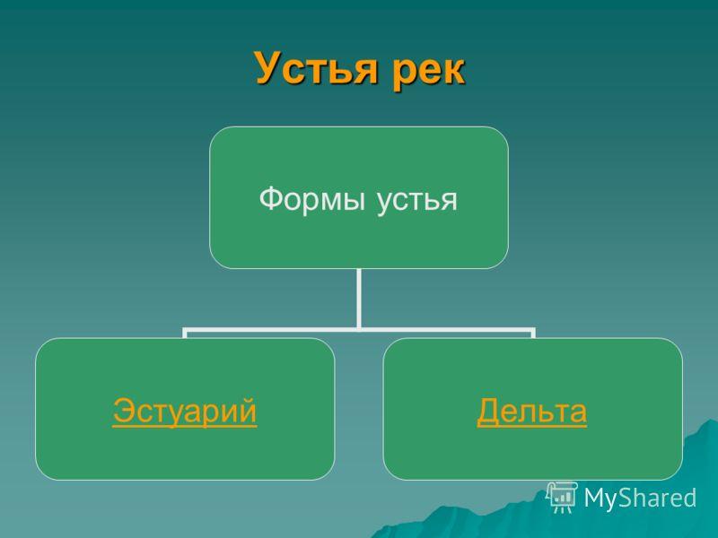 Устья рек Формы устья ЭстуарийДельта