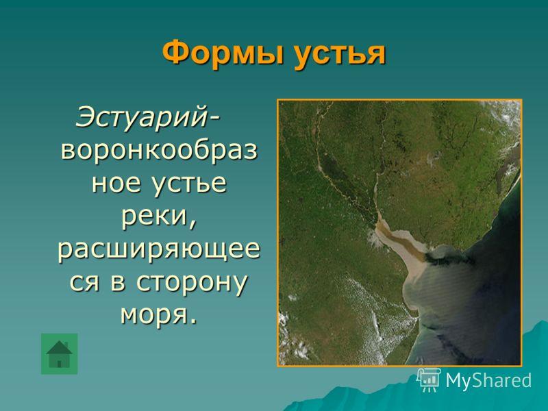 Формы устья Эстуарий- воронкообраз ное устье реки, расширяющее ся в сторону моря.