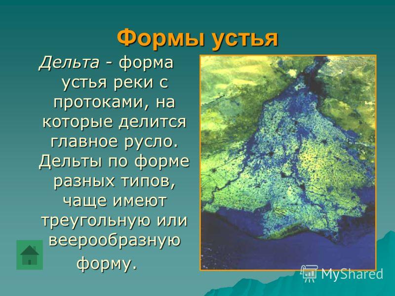 Формы устья Дельта - форма устья реки с протоками, на которые делится главное русло. Дельты по форме разных типов, чаще имеют треугольную или веерообразную форму.
