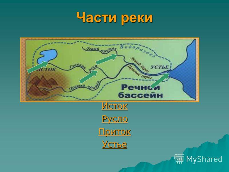 Части реки Исток Русло Приток Устье