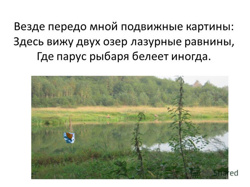 Везде передо мной подвижные картины: Здесь вижу двух озер лазурные равнины, Где парус рыбаря белеет иногда.